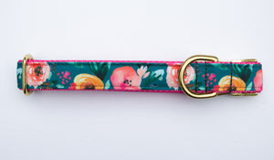 Harvest Blooms Canvas Dog Collar