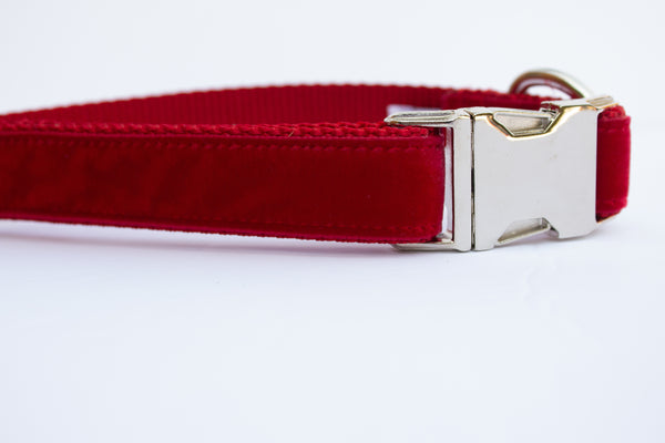 Red Velvet Dog Collar