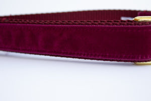 Bordeaux Velvet Dog Collar