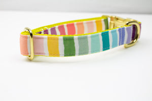 Striped Rainbow Canvas Dog Collar