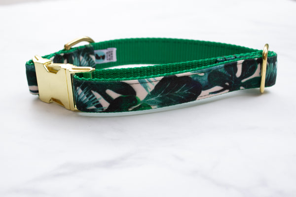 Tropical Leaves Canvas Dog Collar