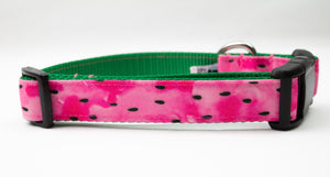 Watermelon Canvas Dog Collar