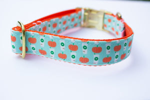 Mint Pumpkin Spice Latte Canvas Dog Collar
