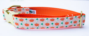 Peach Pumpkin Spice Latte Canvas Dog Collar