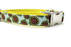 Sunflower Canvas Dog Collar