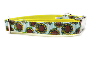 Sunflowers Canvas Dog Collar