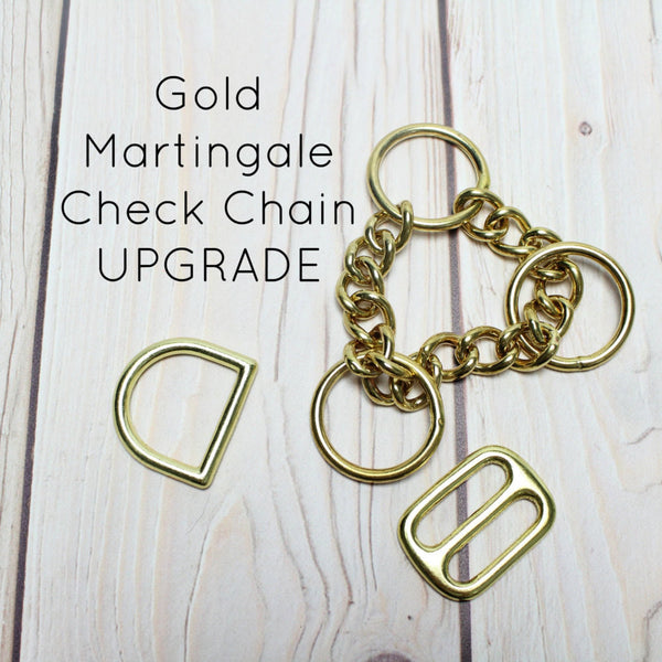 Upgrade Collar to Gold Half Check Chain Martingale