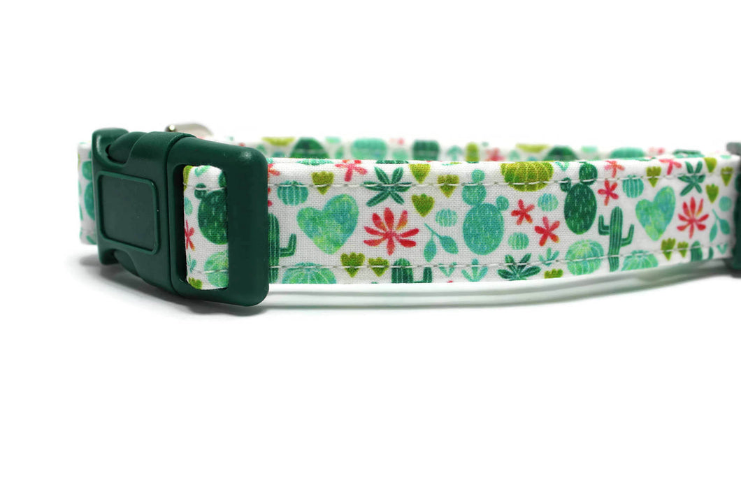 Colorful Succulent Dog Collar