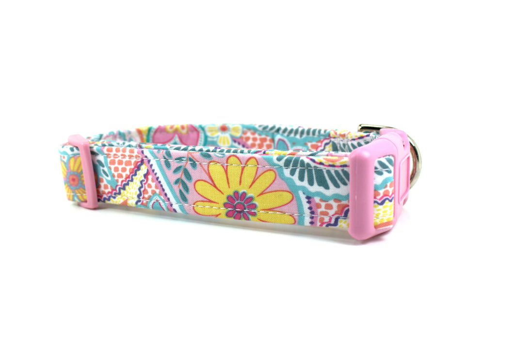 Pastel Paisley Dog Collar