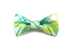 Plaid Spring Showers Dog Collar and Removable Dog Bow Tie Set
