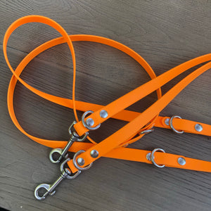 Multifunction Euro Dog Lead