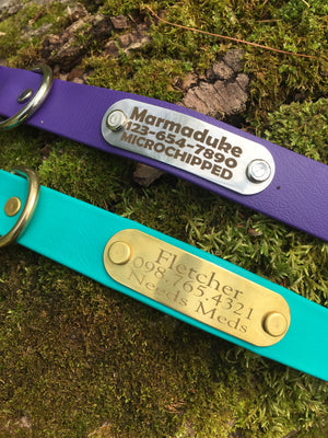 Multicolored Waterproof Biothane Dog Collar - Choice of color and width