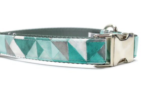 Winter Storm Canvas Dog Collar