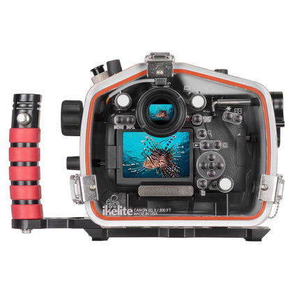 Canon EOS 6D MKII - Ikelite 200DL Housing - 71720 - Sea Tech Ltd