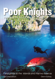 Poor Knights Wonderland (1st or 2nd ed)