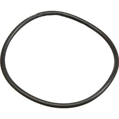 Ikelite O-Ring for DS160, DS161, DS125 Battery Door - 0132.36 - Sea Tech Ltd