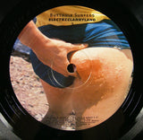 Butthole Surfers - Electriclarryland Double LP, Etched, 1996 First Pressing, EXC Vinyl