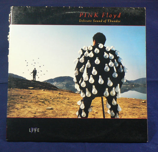 Pink Floyd -  Delicate Sound Of Thunder Double LP