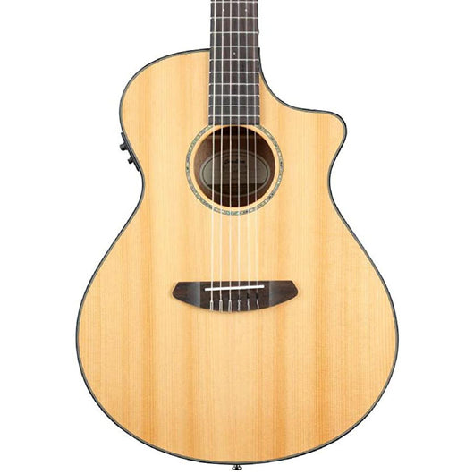 Breedlove Pursuit Nylon CE w/ Gigbag