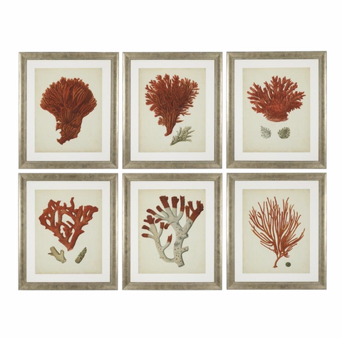 ANTIQUE RED CORALS SET OF 6 PRINTS