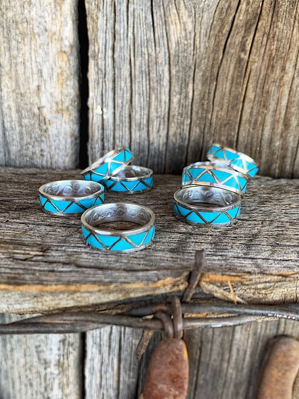 The Coyote: Turquoise Band