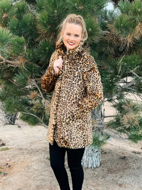The Wild Cat: Leopard Coat