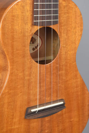 Kala Elite USA KOA 2 Tenor Gloss