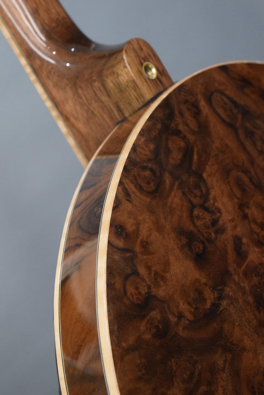 Nechville Midnight Phantom w/ Burl Walnut and Maple Binding (#2816)