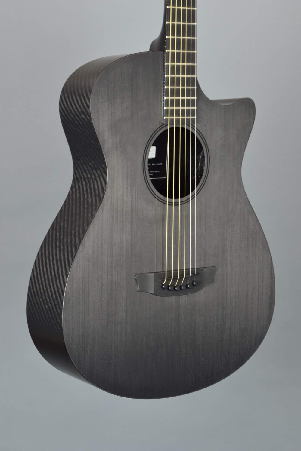 RainSong CH-OM1100NS Pure Acoustic