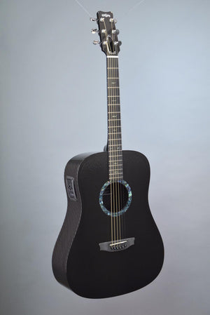 RainSong CO-DR1000NS (12-Fret Dreadnought)