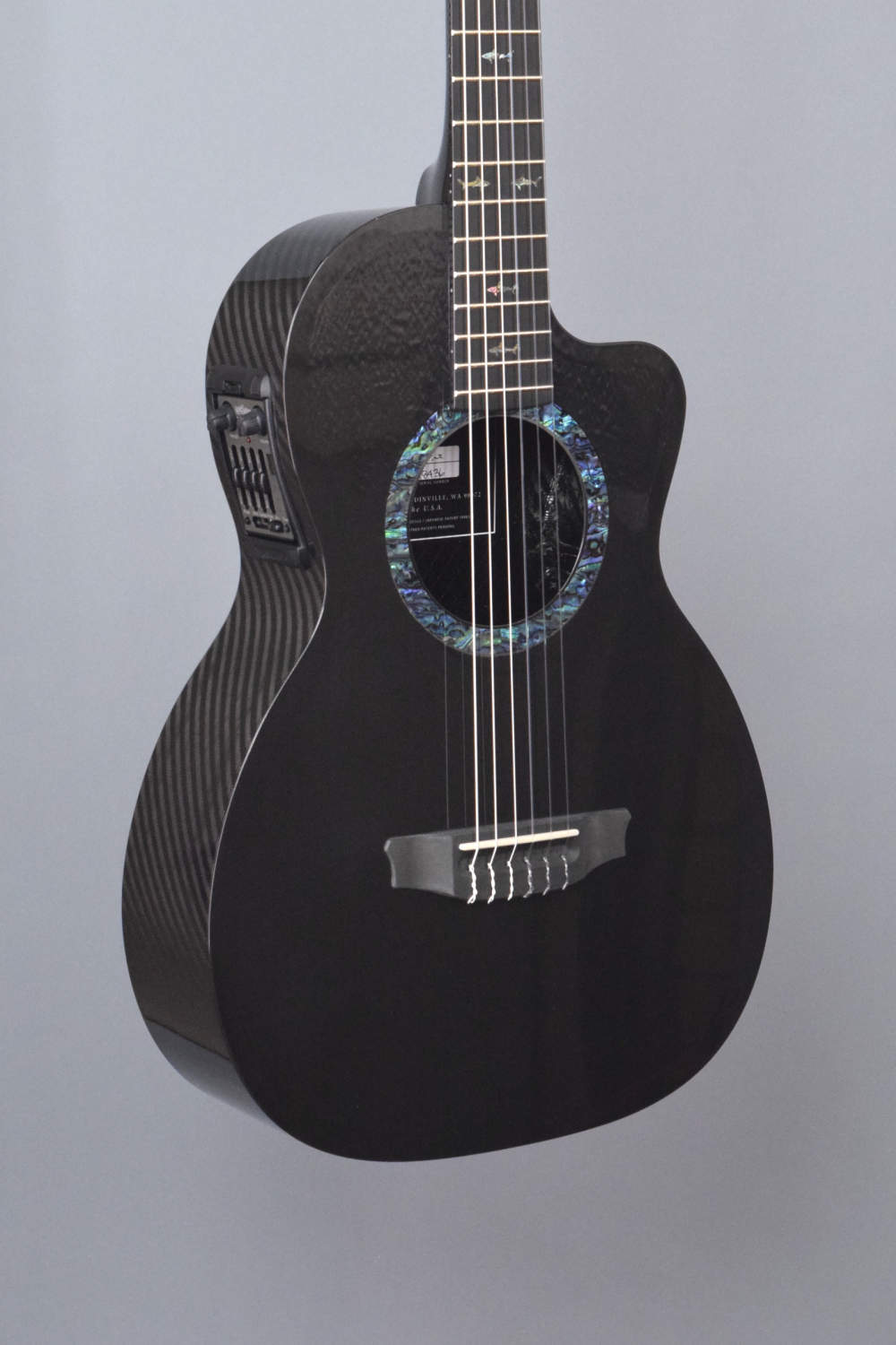 rainsong co pa9000ns nylon string carbon fiber guitar for sale. Black Bedroom Furniture Sets. Home Design Ideas