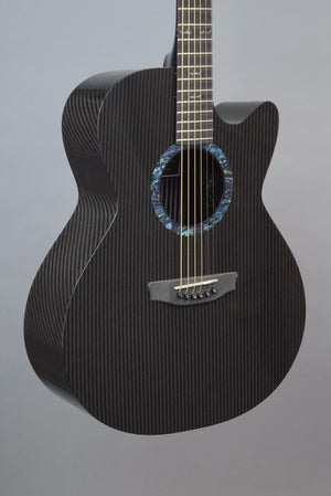 RainSong WS1100N2 Pure Acoustic