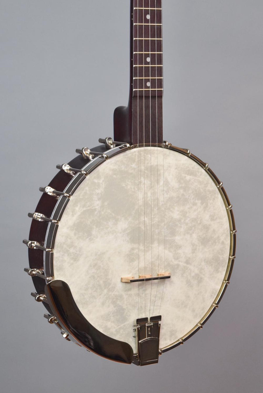 Recording King RK-O25-BR Open Back Banjo