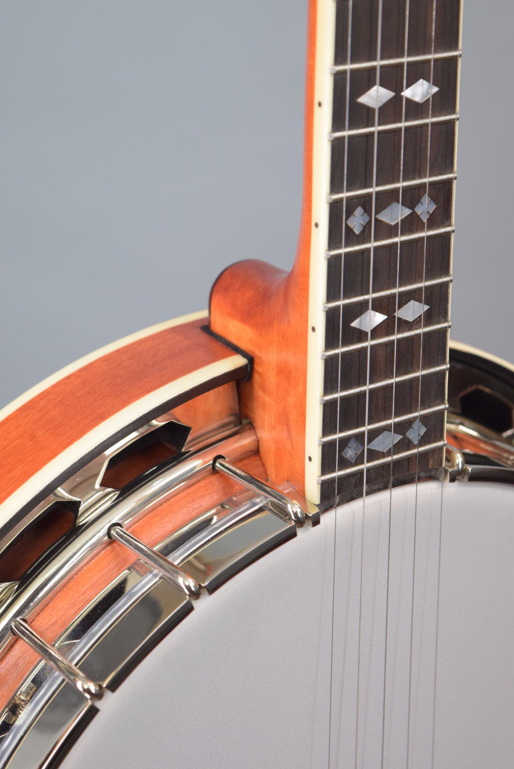 Recording King RK-R30-BGM Banjo for Sale For Sale