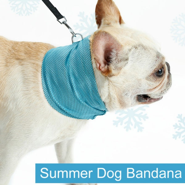 Summer Refrigerated Dog Bandana Pet Scarf Cooling Collars Pet Sunstroke Prevention Cooling Towel Wrap Neck For Dogs New