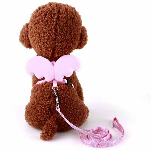 Cute Angel Leash for Small Dogs