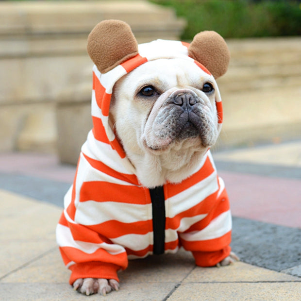 The Orange Striped Bear