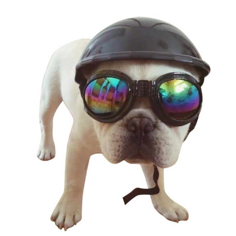 Biker Dog Helmet
