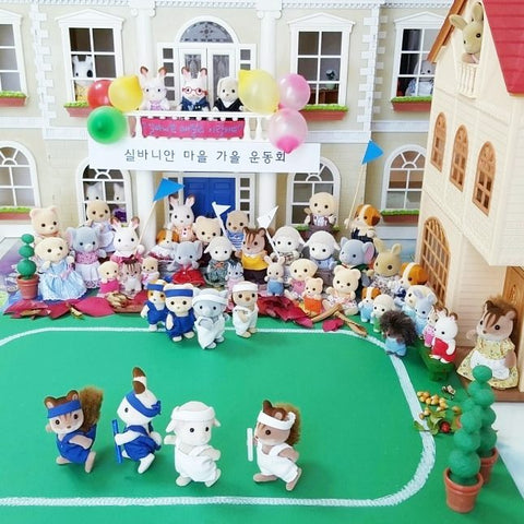 Sylvanian Families School Sports Day team