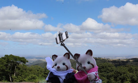 Sylvanian FAmilies taking a selfie