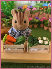 Sylvanian FAmilies with miniature vegetables market day