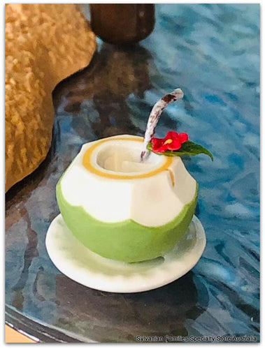 Dollshouse miniature coconut drink beach