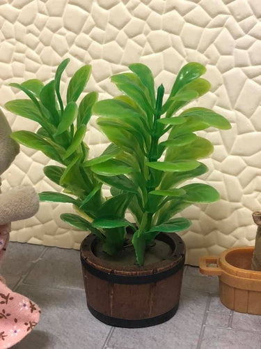 Dollshouse miniature potplant rubber tree