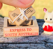 Parcels and Sylvanian Minifigure in crate - Choose your city or state