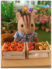 Sylvanian Families with miniature size vegetable crates Market Day