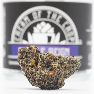 Strain Review: Cream Of The Crop - Purple Reign