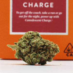 Charge (s) - Canndescent (22% THC)