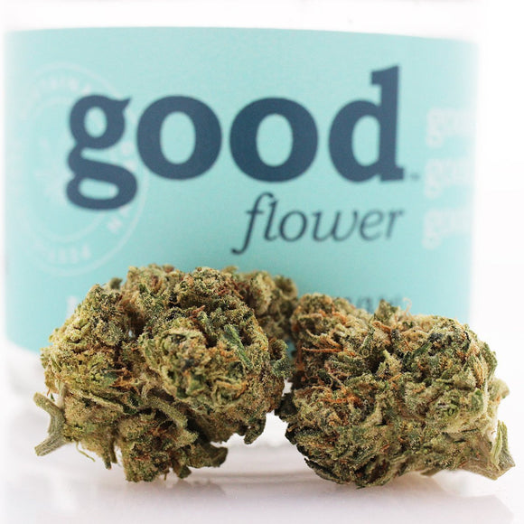 Girl Scout Cookies (h/i) - Good Flower