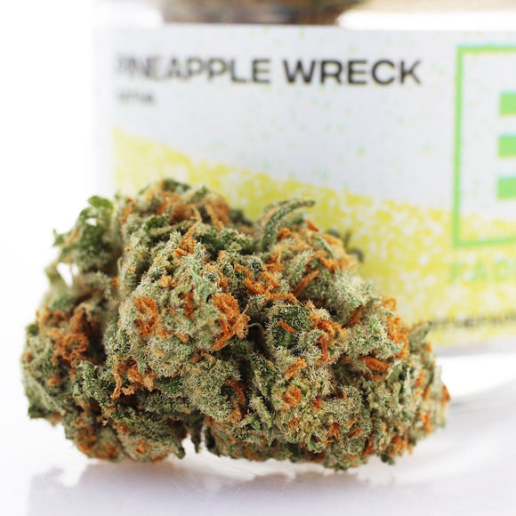 Pineapple Wreck (s) - Fade Co.