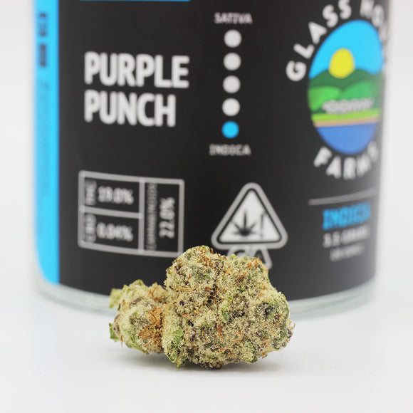 Purple Punch (i) - Glass House Farms (19% THC)